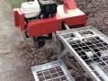 自走式汽油机单轨车 湖南丘陵地带运输车 小巧灵便单轨车